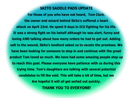Skito Equalizer Custom Made Saddle Pads ~ If Horses could